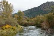 Cowichan River and Stone Church