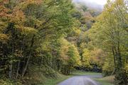 Heinatooga Ridge Road in Fall Color