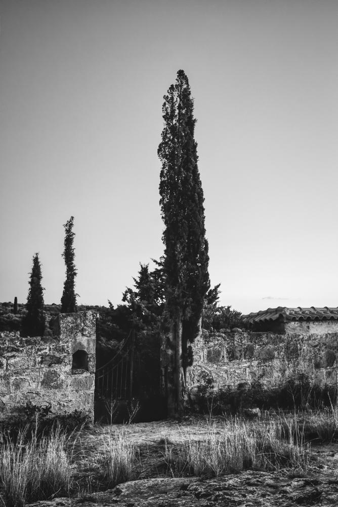Καρδαμύλη (12) ...