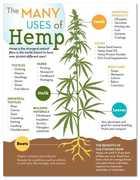 Marijuana edibles Canada