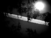 Halloween Morning Moon
