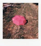 Sentiero e ombrello