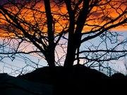 winter sunset in SoBo