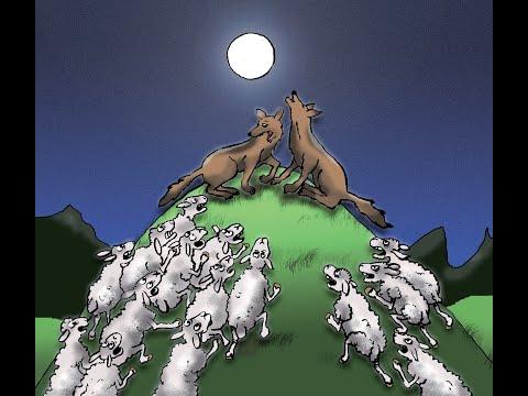La révolte des moutons: Fable sociale pour petits et grands: Audio 1er partie