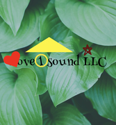 Love1soundLLC