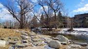 Stepping Stones Next to Boulder Creek