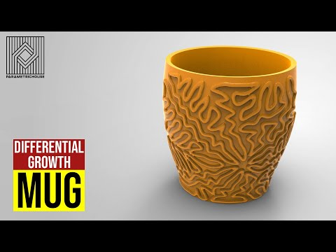 Differential Growth Mug