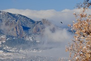 Fog swirling around the Flatirons after snow storm