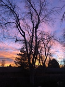 South Boulder Sunrise