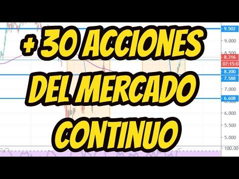 ACCIONES DEL MERCADO CONTINUO