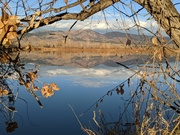 Early morning at Coot Lake near Boulder Reservoir