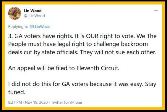 lin-wood-georgia-votes