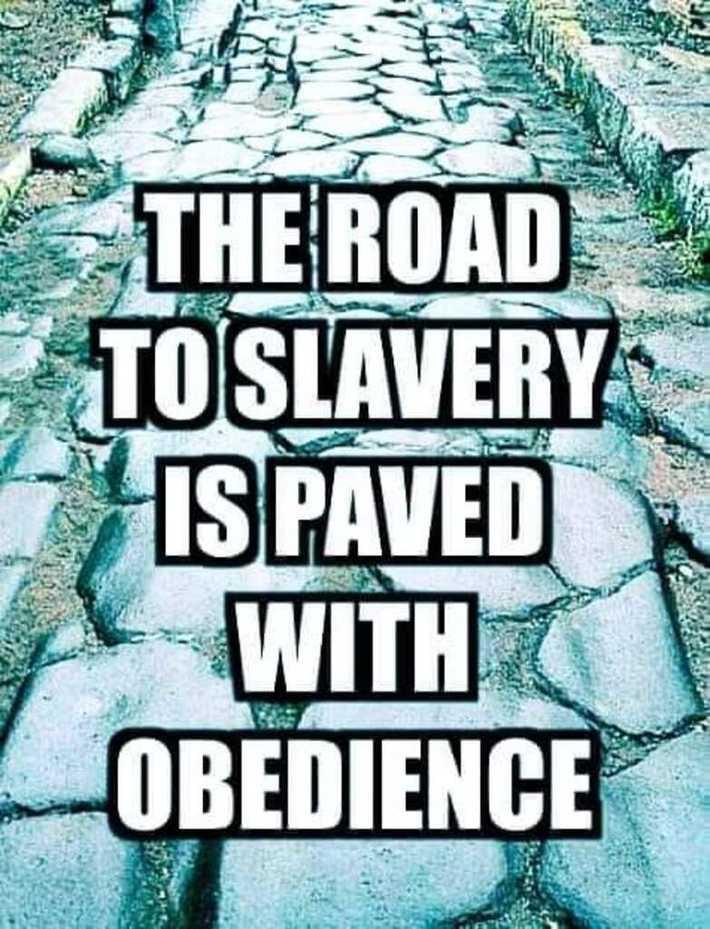 obey goyim slaves