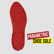 Parametric Shoe Sole