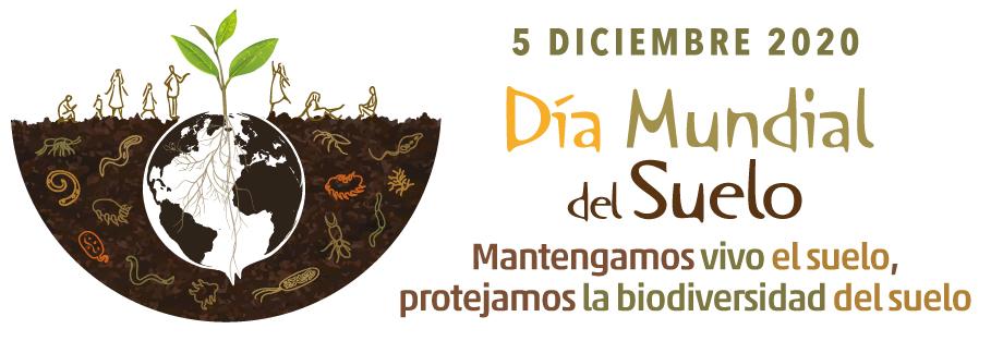 5 de desembre: dia mundial del sòl