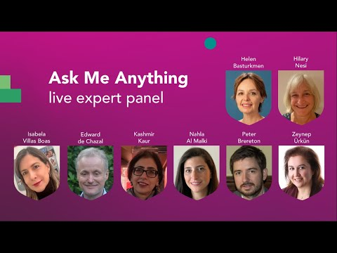 Ask Me Anything panel discussion - Academic English Conference