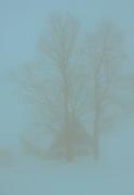 βαφοντας την ομιχλη