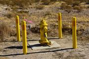 Locked Hydrant (a)