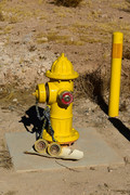 Locked Hydrant (b)
