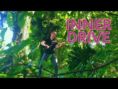 Asher Laub - Inner Drive