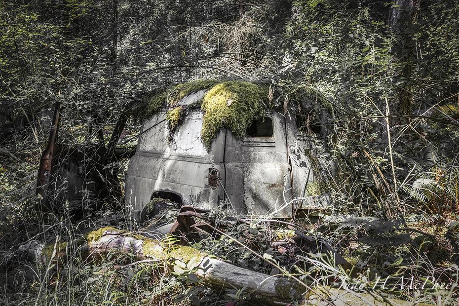 Forgotten Vehicle