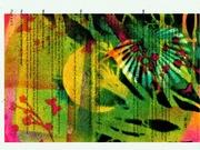 palm.<>.><.d #2...<>..><.1r..<>.><. jpg
