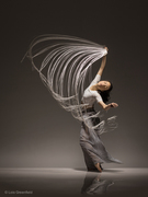 Lois Greenfield: Moving Still Exhibit