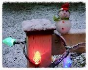 A Snowman on Salt Spring Island