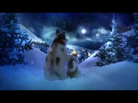 Chris Norman Christmas Song
