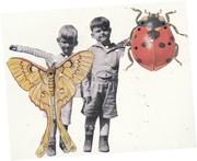 Kathy Barnett's puppetry