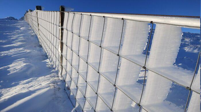 ყინვა, თოვლი, ზამთარი, ფოტოგრაფია, ფოტოკოლაჟი, ყინვის ძალა, qwelly, blog