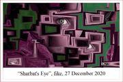Sharbat's Eye