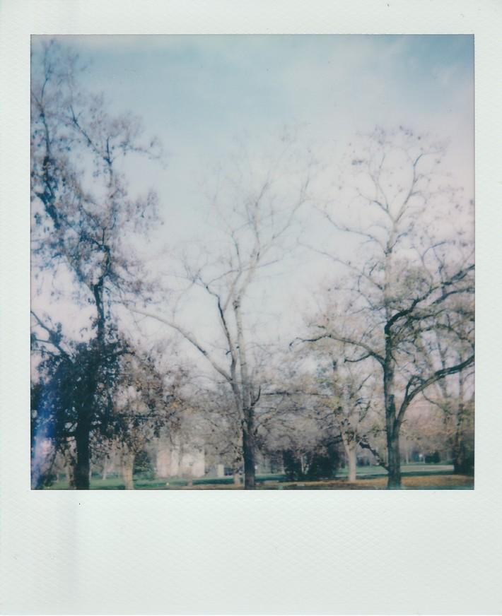 Autunno nel parco