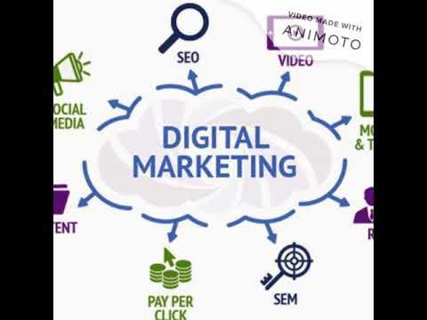 digital marketing agency wexford