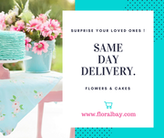 Online Valentine Gifts Same Day Delivery | Best Gifts for Valentines Day