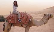 Which is the best desert safari operator in Dubai?