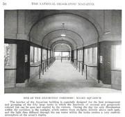 NGM 1921-01 Pic 07
