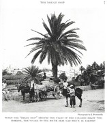 NGM 1921-01 Pic 02