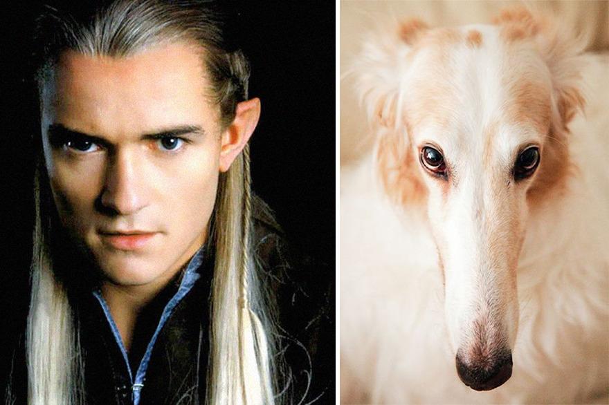 ფოტოგრაფია, მანიპულაცია, ბეჭდების მბრძანებლები, Lord Of The Rings, LORT, qwelly, blog