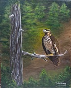 Denise McElney Paintings