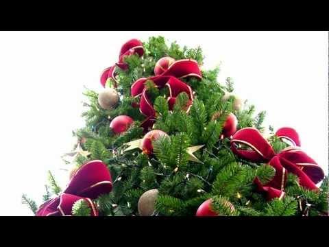 Grant Rant #29: It's a Christmas Tree!