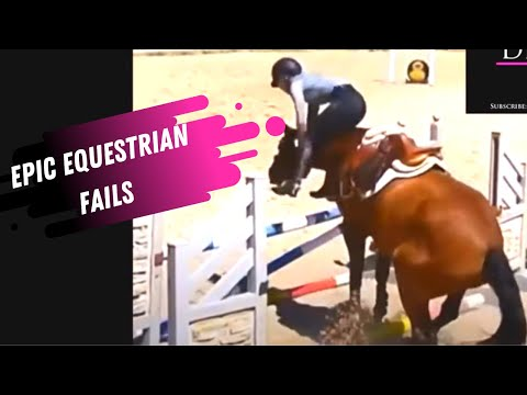 The BEST Horse Videos Of The Week - Horse Fails