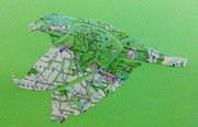 Map pigeon cutout