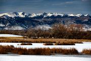 Teller Lake vista 1