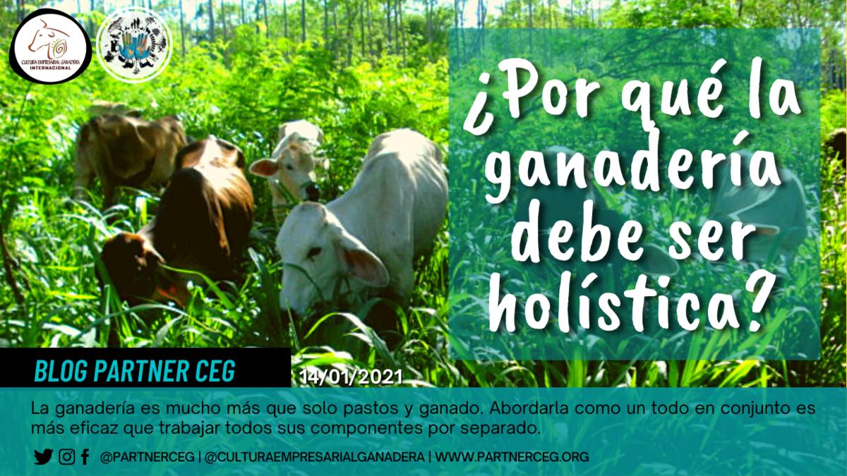 ¿Por qué la ganadería debe ser holística?