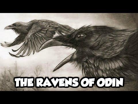 Odin's Mythical Ravens - Huginn and Muninn (Norse Mythology Explained)