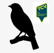 Beginner's Guide to Garden Bird Identification Online Training