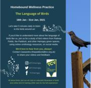 The Language of Birds - Homebound Wellness Practice