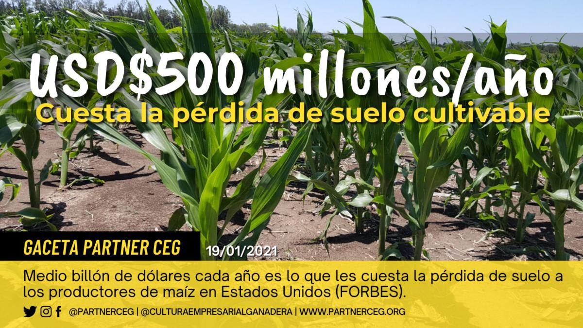 La pérdida de suelos productivos en EEUU cuesta medio billón de dólares al año