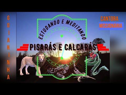 1ª e 2ª PARTE - SALMOS 91.13 LEÃO E LEÃOZINHO - GOIANINHA